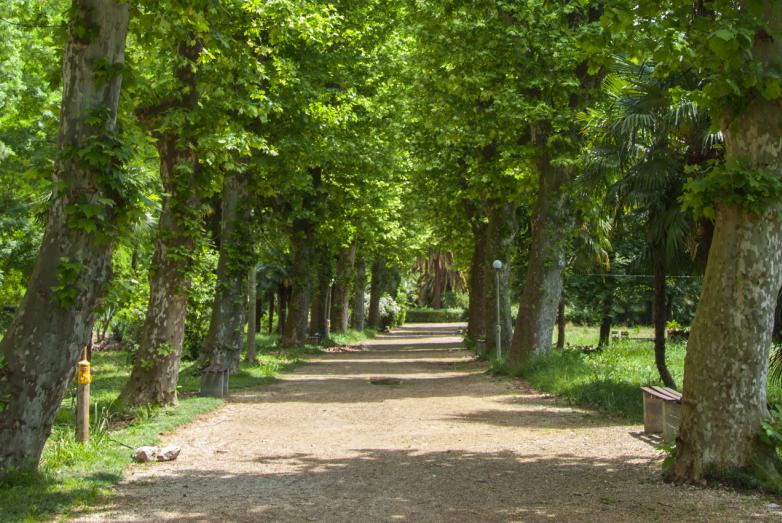 Парк Ольденбургского, наше время