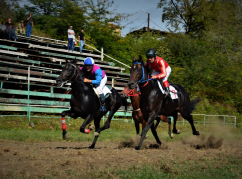 Equestrian sport competitions in the village of Myku