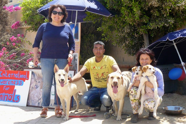 Employees of the Society for the Protection of Animal Rights in Egypt S.P.A.R.E.