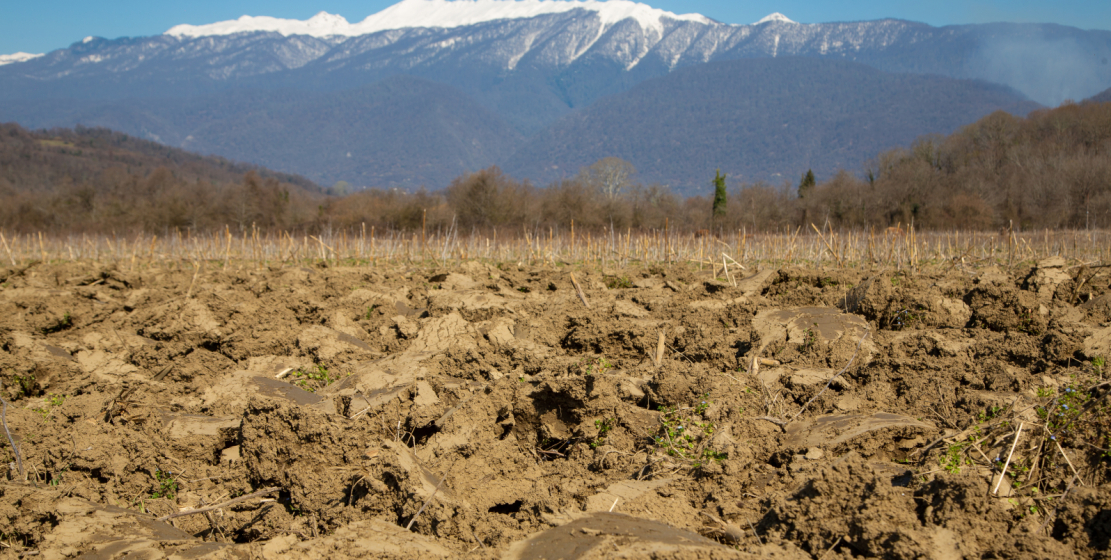 A plowed field against the backdrop of snow-capped mountains. Very soon, the first sprouts of corn will appear here.